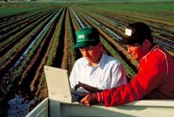 Agricultural Business/Economics in the fields