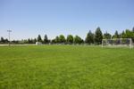 Rec Field