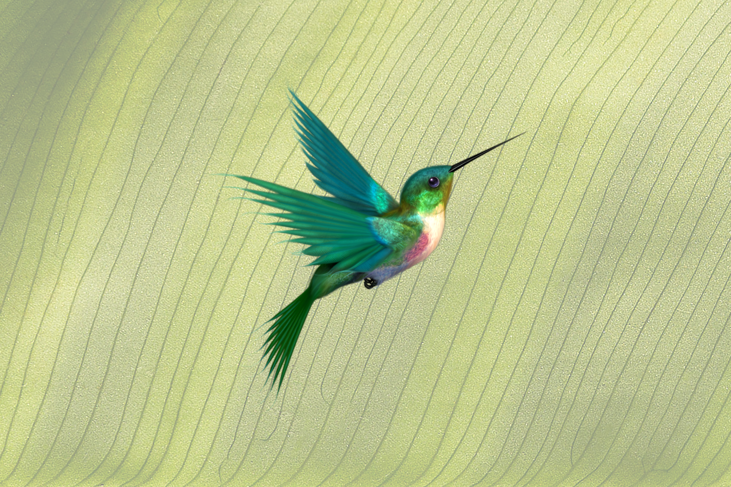 Hummingbird with a green background.