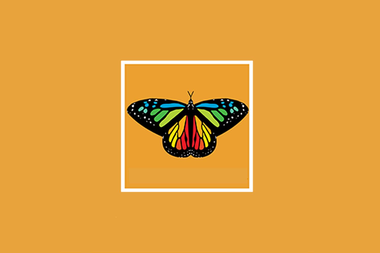 Monarch butterfly on orange background.