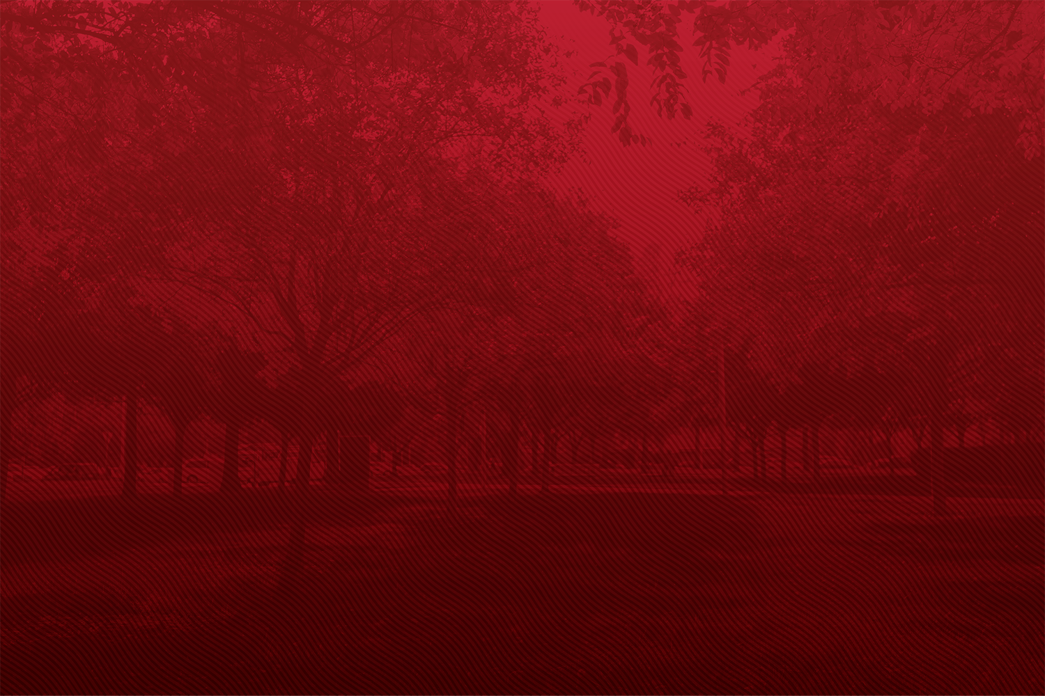 Trees. Red background.