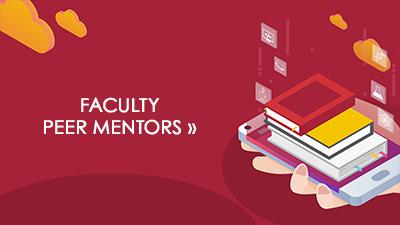 Faculty Peer Mentors