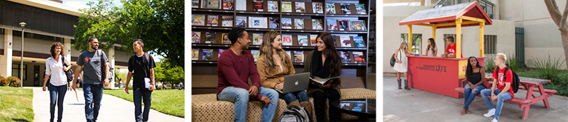 Three images of students learning and spending time together in groups on campus.