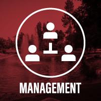 Management career opportunities