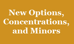New options, concentrations, and minors