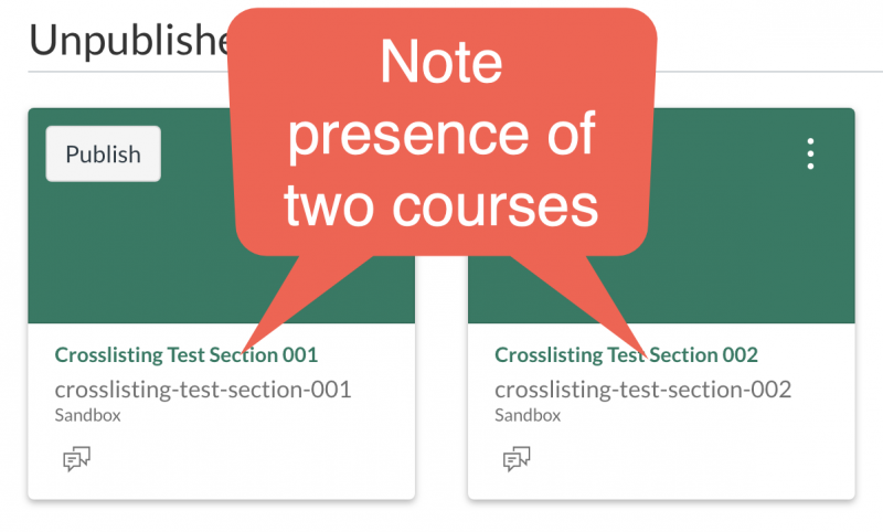 Canvas dashboard showing two sections of the same course