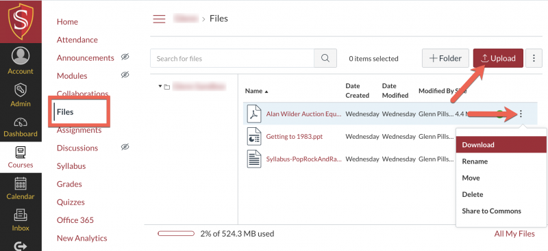 Viewing files in Canvas