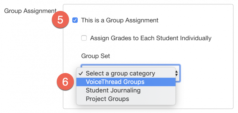 Canvas group assignment options