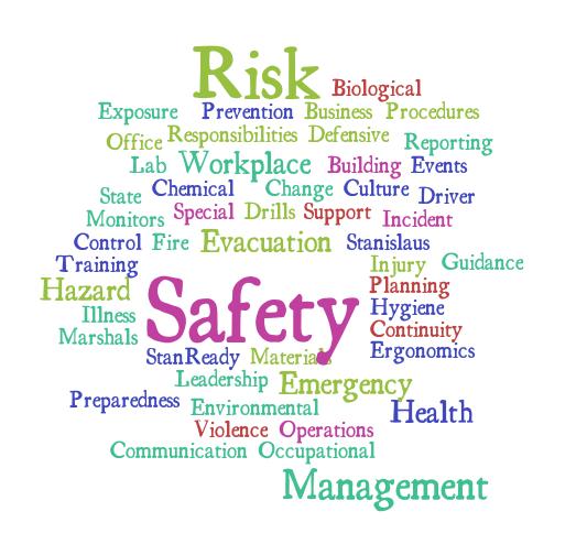 Risk Safety management