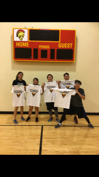 Co-Rec Volleyball Champions Unstoppables