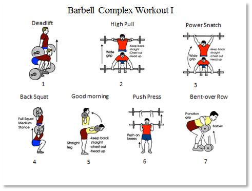 Barbell Dumbbell Comple