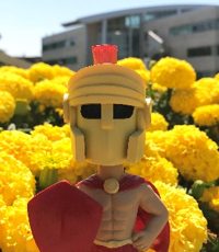 Titus in front of yellow flowers
