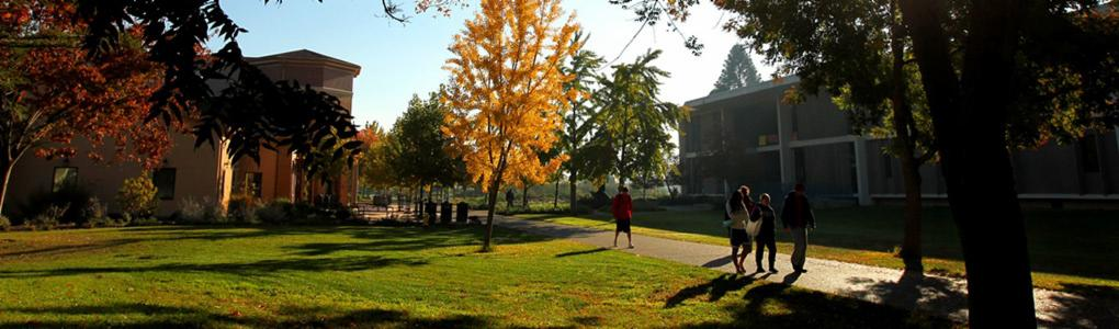 Students walk on path under autumnal trees, Science building and University Bookstore visible in background