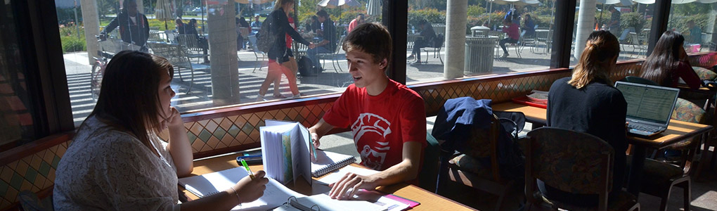 Students studying in main dining