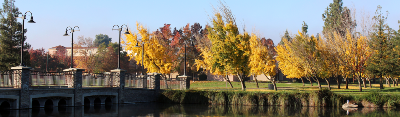 Portrait of one of CSU Stanislaus bridges with trees and a duck