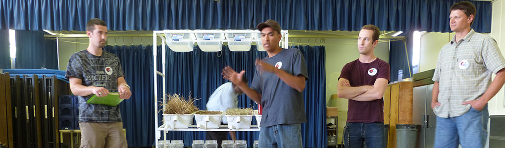 four people presenting in front of shelves holding bins with various grasses