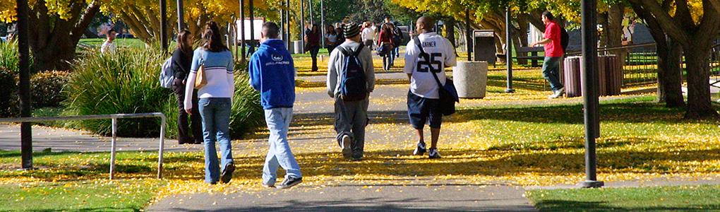 Students walking along pathway near Bizzini Hall