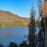 US Forest Service, Pacific Southwest Region 5