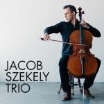 Jacob Szekely TrioMBA Information Session