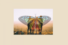 watermark of butterfly with students looking out into the horizon