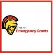 Cares Emergency Grant