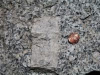 image of a penny on a rock