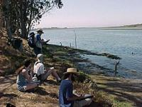 students near ocean