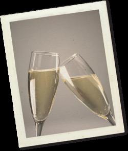 champagne polaroid