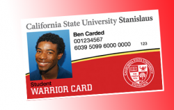 image of warrior card
