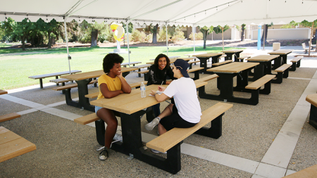 Outdoor study space in Arts Quad