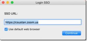 SSO URL box