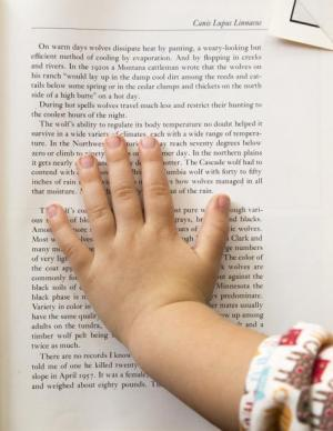 Child's hand placed over a page of a book.