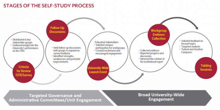 Multi-phased, multi-pronged stages of the self study process