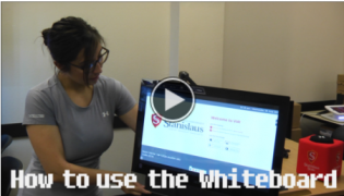 How to use the Whiteboard video link