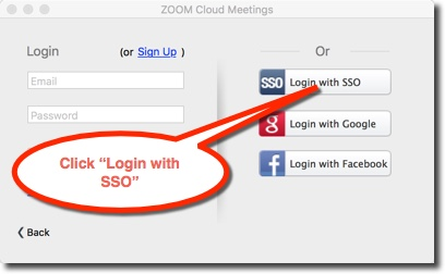 Choose the Login with SSO option